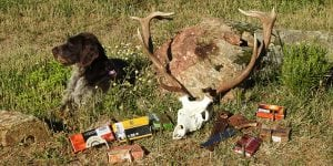 The Best Hunting Calibers to have a Successful Driven Hunt