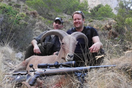 aoudad trophy hunter