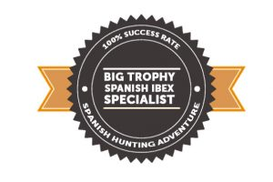 big-trophy-spanish-ibex-specialist