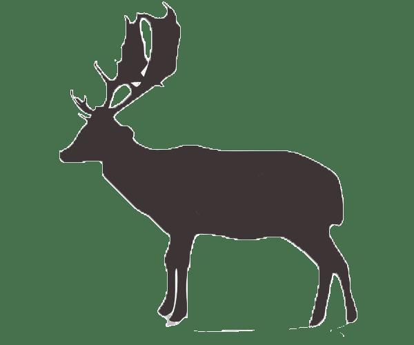 fallow deer icon