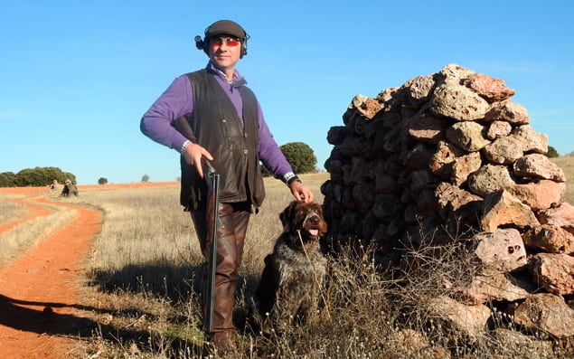 driven partridge shooting spain