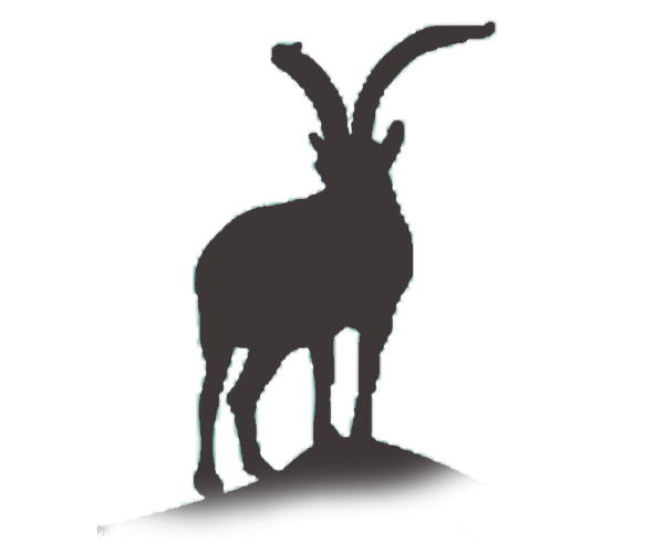ibex icon