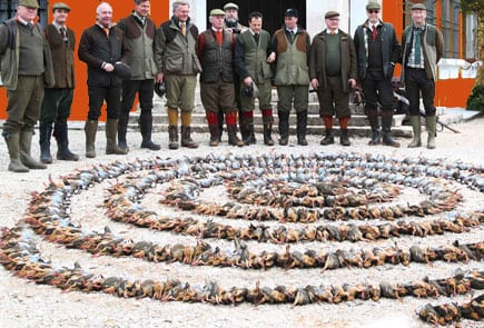 driven partridge shooting spain parade