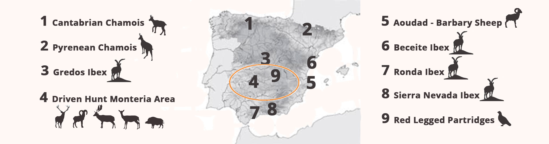 hunting areas spain