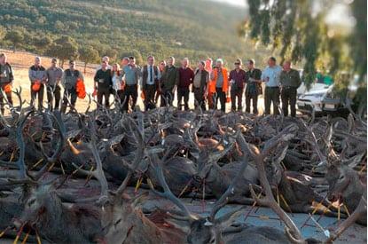 spanish hunting monteria