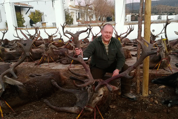 red stag trophy hunts
