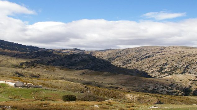 ronda ibex hunting landscape