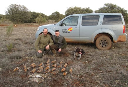 red legged partridges parade with french customers and friends