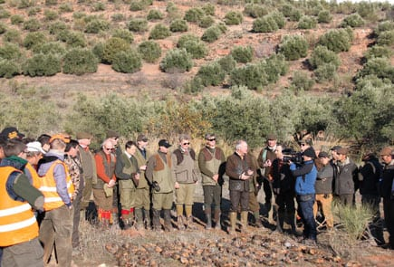 Driven Shooting Red Legged Partridges in Spain